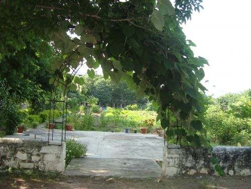 north entrance of Shiv Bagh