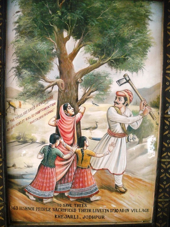 16 Life for a Tree - Amrita Devi Bishnoi with her daughters died embracing Khejri in attempt to save it from being cut