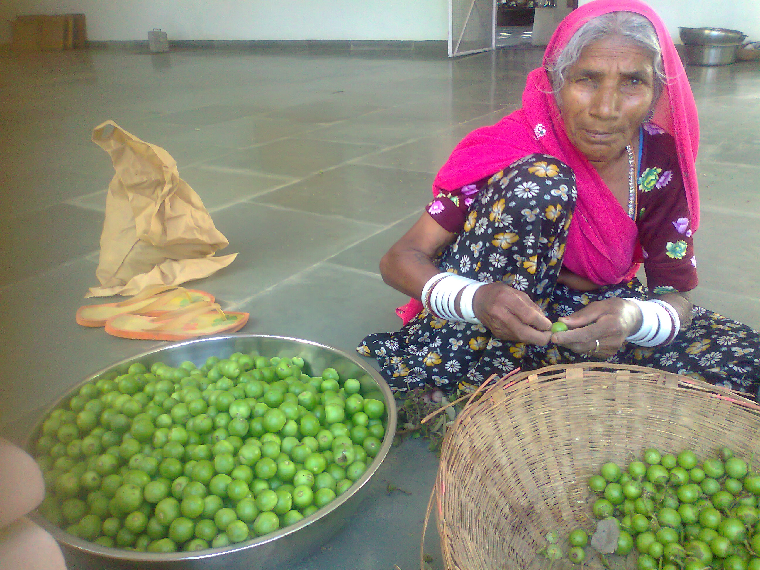 preparing gundas for cooking and drying