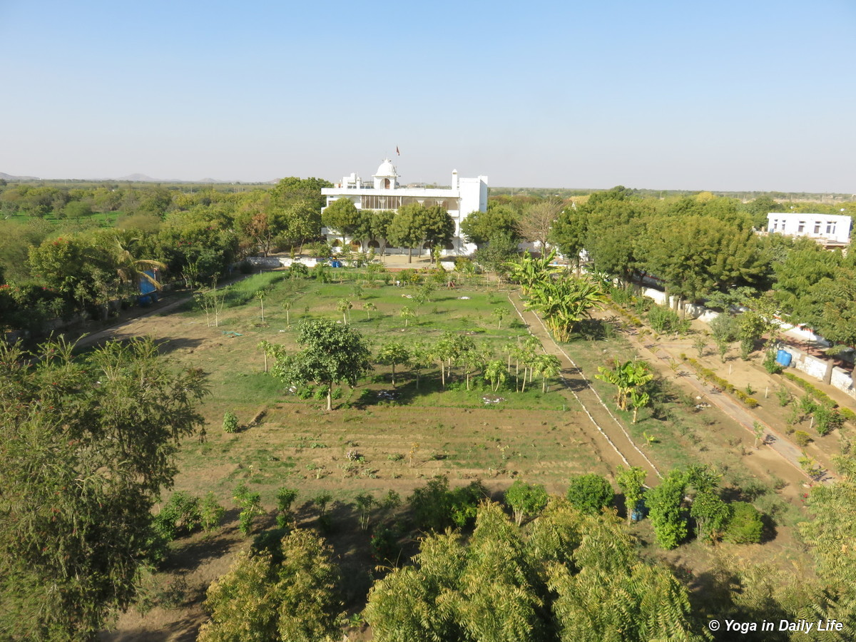Aerial view of Shiv Bagh after the big clean up