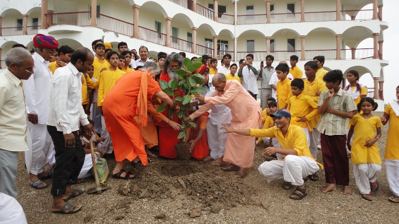 Planting Iccha world peace tree