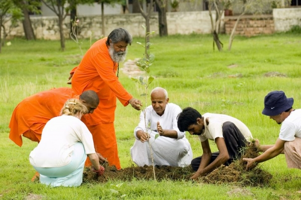 Reforestation and Organic Garden