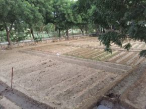 1 empty section left for tomatoes next beds are winter lettuce varieties 1200