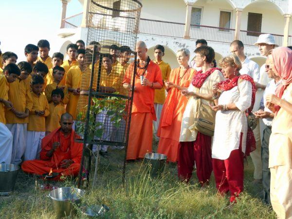 Om-Ashram-Peace-Tree-2014-4