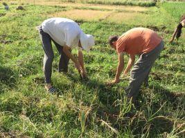 Sagar and Shivpuri putting their backs into it 600