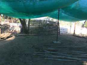 a 160 square metre shade house 1200