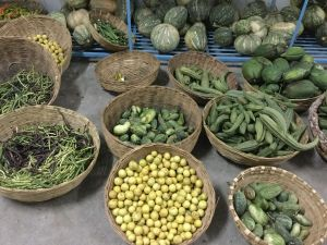 all our organic monsoon produce