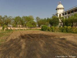 New area prepared for marigold and bottle gourd