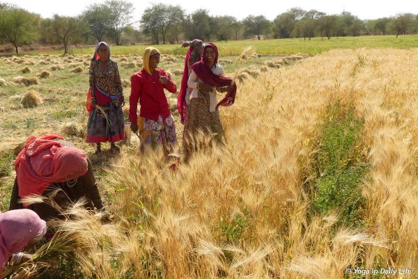 Village ladies happy at their work